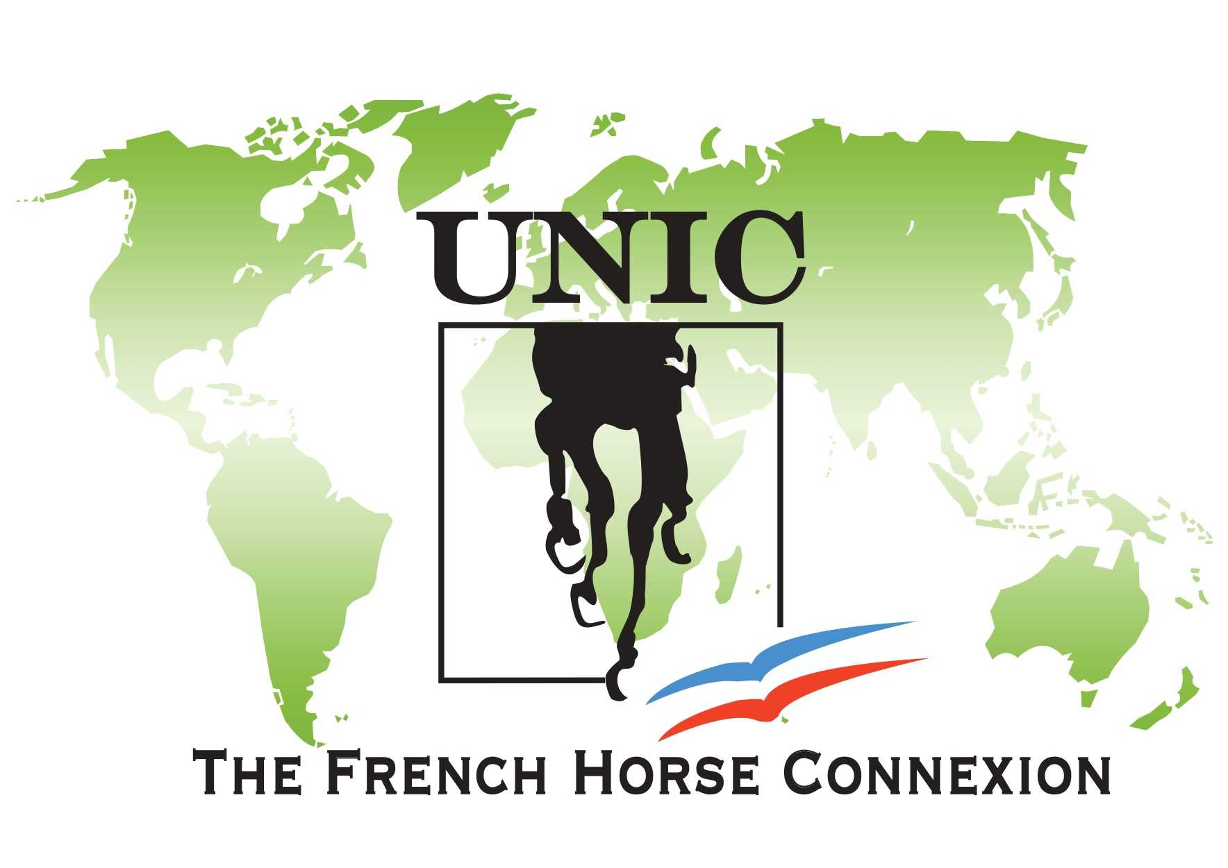 The French Horse Connexion